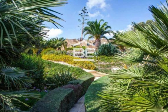 villa-in-gozo-with-huge-lusious-garden